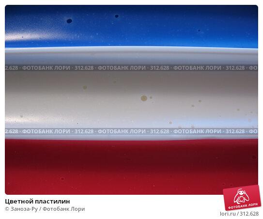 Цветной пластилин, фото № 312628, снято 3 июня 2008 г. (c) Заноза-Ру / Фотобанк Лори