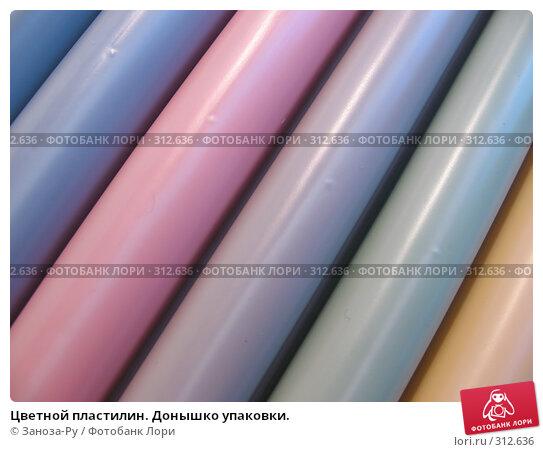 Купить «Цветной пластилин. Донышко упаковки.», фото № 312636, снято 3 июня 2008 г. (c) Заноза-Ру / Фотобанк Лори