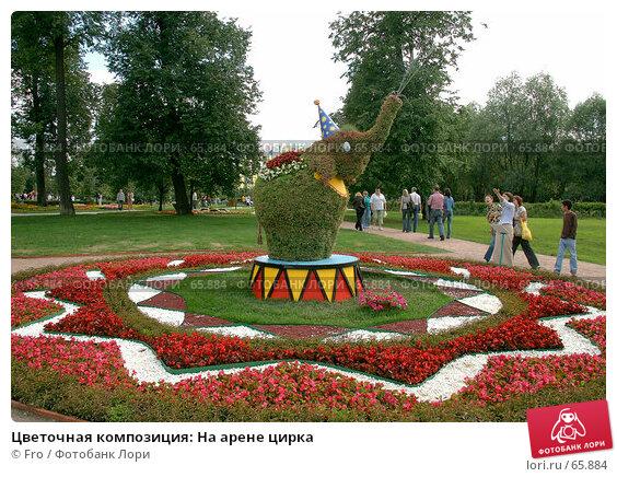 Цветочная композиция: На арене цирка, фото № 65884, снято 14 июля 2007 г. (c) Fro / Фотобанк Лори