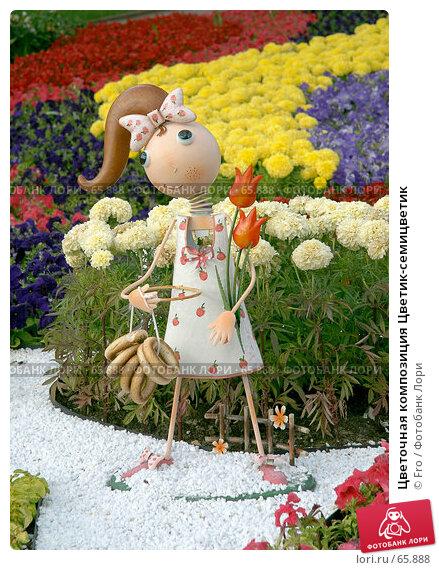 Цветочная композиция Цветик-семицветик, фото № 65888, снято 14 июля 2007 г. (c) Fro / Фотобанк Лори