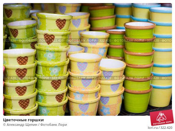 Купить «Цветочные горшки», эксклюзивное фото № 322420, снято 8 июня 2008 г. (c) Александр Щепин / Фотобанк Лори