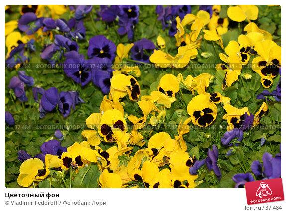 Цветочный фон, фото № 37484, снято 26 апреля 2007 г. (c) Vladimir Fedoroff / Фотобанк Лори