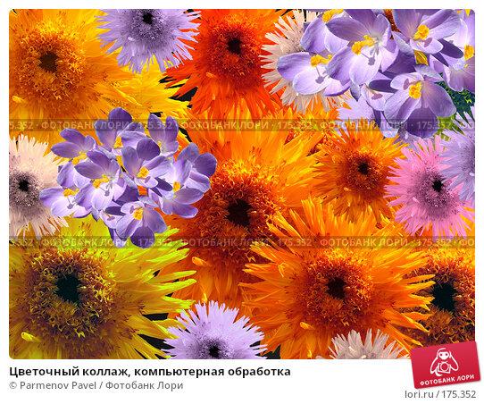 Купить «Цветочный коллаж, компьютерная обработка», фото № 175352, снято 15 апреля 2007 г. (c) Parmenov Pavel / Фотобанк Лори