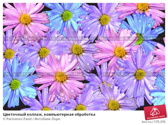 Цветочный коллаж, компьютерная обработка, фото № 175376, снято 11 января 2008 г. (c) Parmenov Pavel / Фотобанк Лори