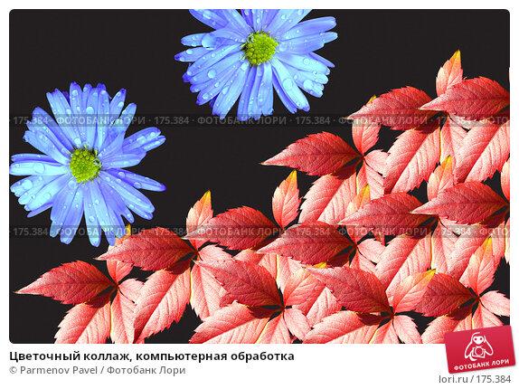Цветочный коллаж, компьютерная обработка, фото № 175384, снято 11 января 2008 г. (c) Parmenov Pavel / Фотобанк Лори
