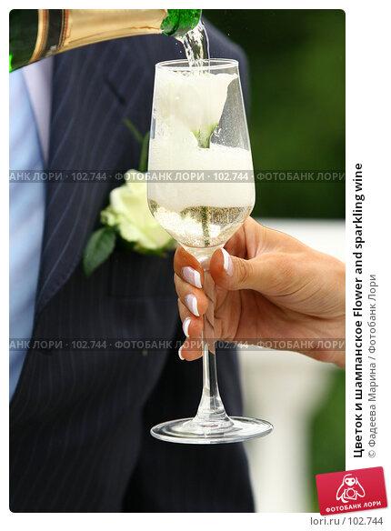Цветок и шампанское Flower and sparkling wine, фото № 102744, снято 23 октября 2016 г. (c) Фадеева Марина / Фотобанк Лори