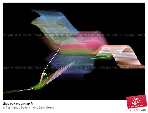 Цветок из линий, иллюстрация № 223440 (c) Parmenov Pavel / Фотобанк Лори