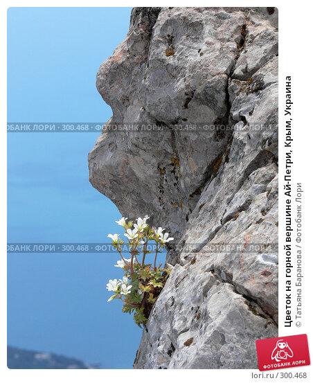 Цветок на горной вершине Ай-Петри, Крым, Украина, фото № 300468, снято 11 июня 2006 г. (c) Татьяна Баранова / Фотобанк Лори