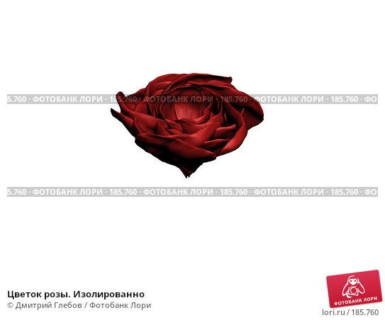 Цветок розы. Изолированно, иллюстрация № 185760 (c) Дмитрий Глебов / Фотобанк Лори