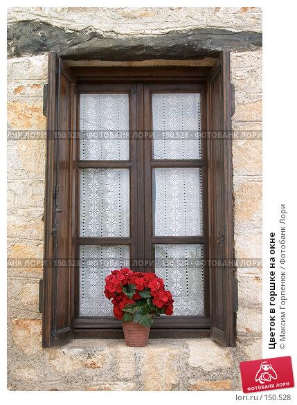 Цветок в горшке на окне, фото № 150528, снято 20 мая 2007 г. (c) Максим Горпенюк / Фотобанк Лори