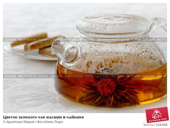 Цветок зеленого чая жасмин в чайнике, фото № 224604, снято 16 марта 2008 г. (c) Архипова Мария / Фотобанк Лори