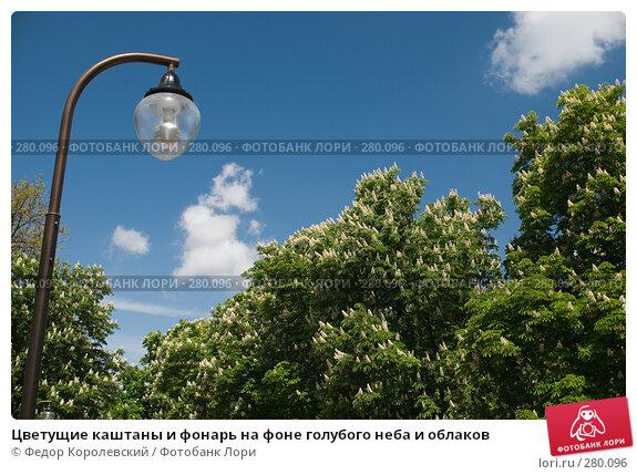 Купить «Цветущие каштаны и фонарь на фоне голубого неба и облаков», фото № 280096, снято 9 мая 2008 г. (c) Федор Королевский / Фотобанк Лори