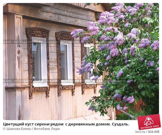 Цветущий куст сирени рядом  с деревянным домом. Суздаль., фото № 304448, снято 23 мая 2007 г. (c) Шилова Елена / Фотобанк Лори