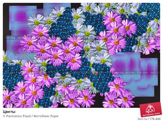 Цветы, фото № 178444, снято 21 декабря 2007 г. (c) Parmenov Pavel / Фотобанк Лори