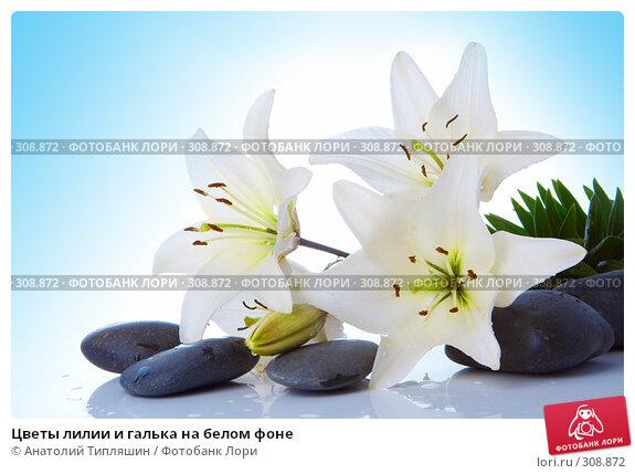 Купить «Цветы лилии и галька на белом фоне», фото № 308872, снято 27 июня 2007 г. (c) Анатолий Типляшин / Фотобанк Лори