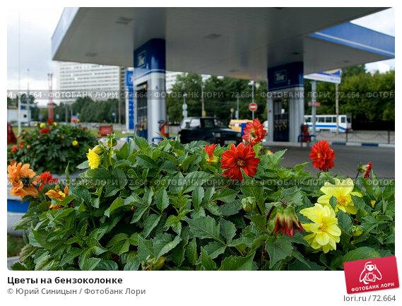 Купить «Цветы на бензоколонке», фото № 72664, снято 27 июля 2007 г. (c) Юрий Синицын / Фотобанк Лори