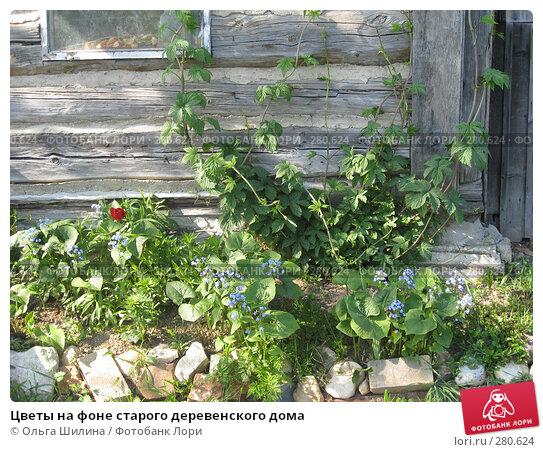 Цветы на фоне старого деревенского дома, фото № 280624, снято 4 мая 2008 г. (c) Ольга Шилина / Фотобанк Лори