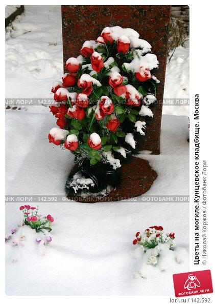 Цветы на могиле.Кунцевское кладбище. Москва, фото № 142592, снято 2 декабря 2007 г. (c) Николай Коржов / Фотобанк Лори