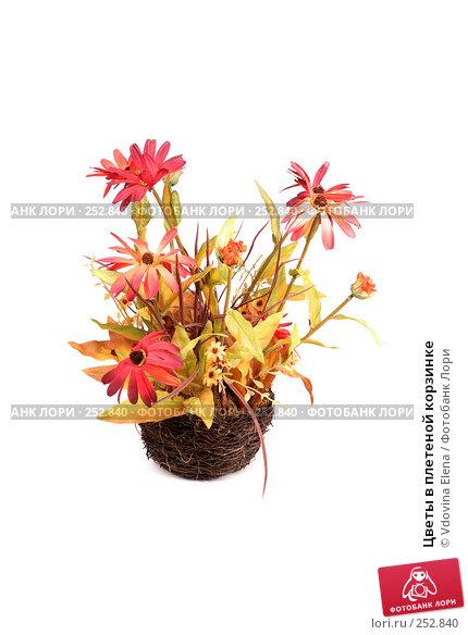 Цветы в плетеной корзинке, фото № 252840, снято 27 февраля 2008 г. (c) Vdovina Elena / Фотобанк Лори