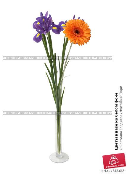 Цветы в вазе на белом фоне, фото № 318668, снято 22 апреля 2008 г. (c) Cветлана Гладкова / Фотобанк Лори