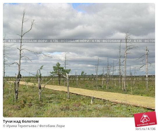 Тучи над болотом, эксклюзивное фото № 4136, снято 21 августа 2004 г. (c) Ирина Терентьева / Фотобанк Лори