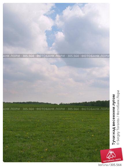 Тучи над весеннем лугом, фото № 305564, снято 11 мая 2008 г. (c) Sergey Toronto / Фотобанк Лори