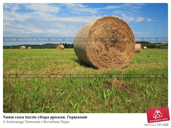 Купить «Тюки сена после сбора урожая. Германия», фото № 101944, снято 20 июля 2007 г. (c) Александр Телеснюк / Фотобанк Лори