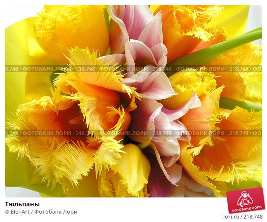 Купить «Тюльпаны», фото № 218748, снято 19 апреля 2018 г. (c) ElenArt / Фотобанк Лори