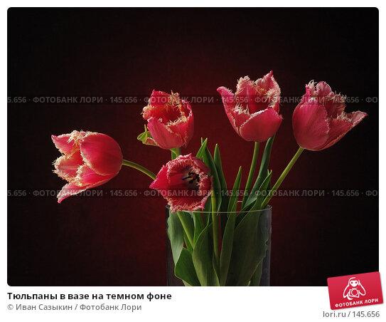Тюльпаны в вазе на темном фоне, фото № 145656, снято 20 апреля 2004 г. (c) Иван Сазыкин / Фотобанк Лори