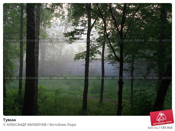 Купить «Туман», фото № 149964, снято 18 июня 2007 г. (c) АЛЕКСАНДР МИХЕИЧЕВ / Фотобанк Лори