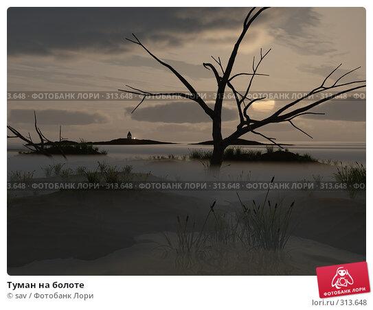 Туман на болоте, иллюстрация № 313648 (c) sav / Фотобанк Лори