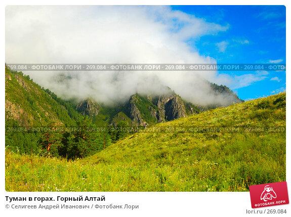 Туман в горах. Горный Алтай, фото № 269084, снято 12 августа 2006 г. (c) Селигеев Андрей Иванович / Фотобанк Лори