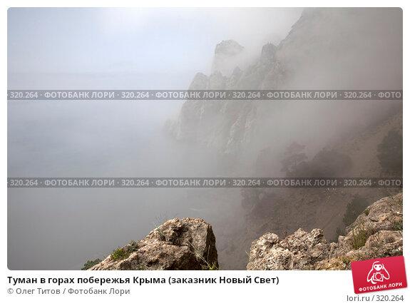Туман в горах побережья Крыма (заказник Новый Свет), фото № 320264, снято 21 мая 2008 г. (c) Олег Титов / Фотобанк Лори