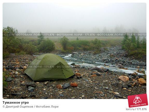 Купить «Туманное утро», фото № 171876, снято 17 августа 2007 г. (c) Дмитрий Ощепков / Фотобанк Лори