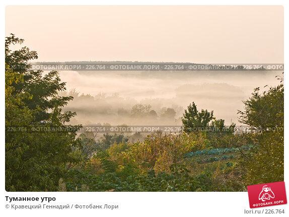 Туманное утро, фото № 226764, снято 11 сентября 2005 г. (c) Кравецкий Геннадий / Фотобанк Лори