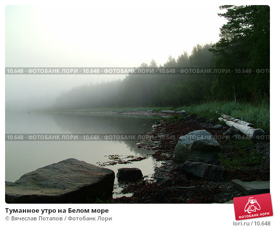 Туманное утро на Белом море, фото № 10648, снято 1 августа 2004 г. (c) Вячеслав Потапов / Фотобанк Лори