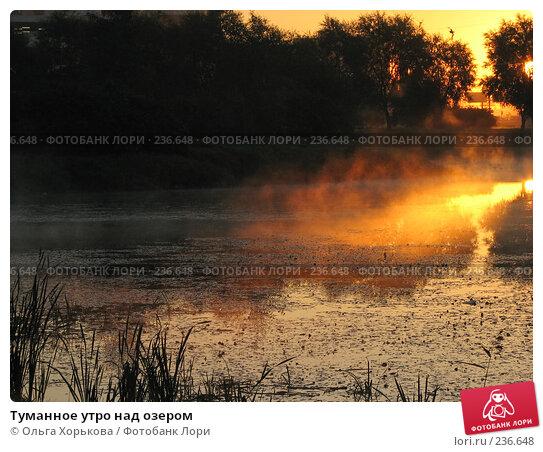 Туманное утро над озером, фото № 236648, снято 20 сентября 2007 г. (c) Ольга Хорькова / Фотобанк Лори