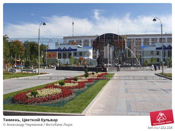 Купить «Тюмень, Цветной бульвар», фото № 222224, снято 10 августа 2006 г. (c) Александр Черемнов / Фотобанк Лори