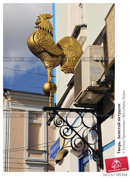 Тверь. Золотой петушок, фото № 189828, снято 24 мая 2017 г. (c) Елена Прокопова / Фотобанк Лори