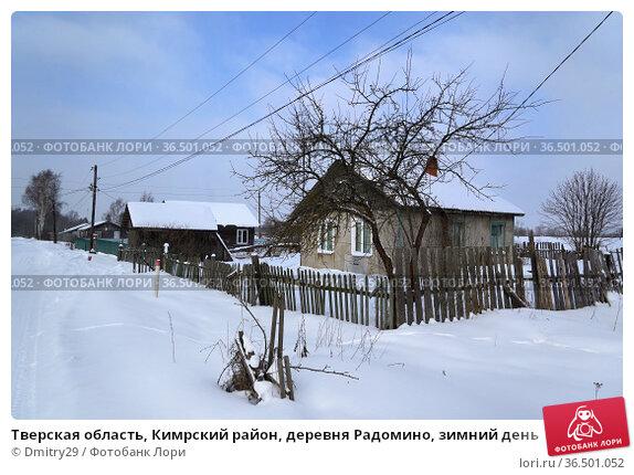 Тверская область, Кимрский район, деревня Радомино, зимний день. Стоковое фото, фотограф Dmitry29 / Фотобанк Лори