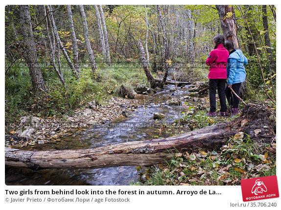 Two girls from behind look into the forest in autumn. Arroyo de La... Стоковое фото, фотограф Javier Prieto / age Fotostock / Фотобанк Лори