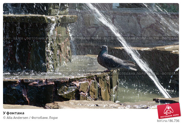 Купить «У фонтана», фото № 86736, снято 23 июля 2006 г. (c) Alla Andersen / Фотобанк Лори