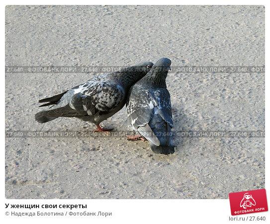 У женщин свои секреты, фото № 27640, снято 20 апреля 2006 г. (c) Надежда Болотина / Фотобанк Лори