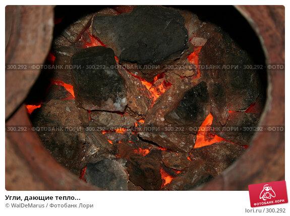 Купить «Угли, дающие тепло...», фото № 300292, снято 20 января 2008 г. (c) WalDeMarus / Фотобанк Лори