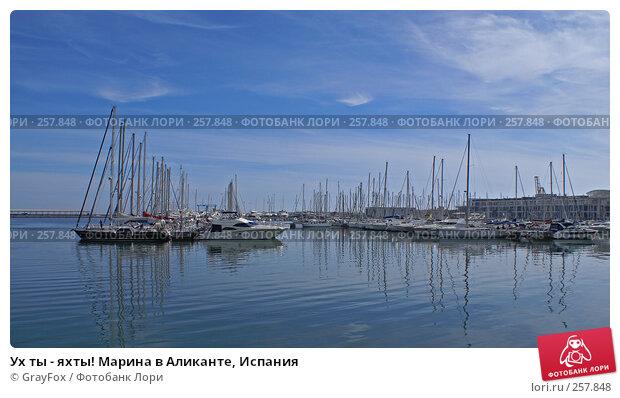 Ух ты - яхты! Марина в Аликанте, Испания, фото № 257848, снято 5 декабря 2016 г. (c) GrayFox / Фотобанк Лори
