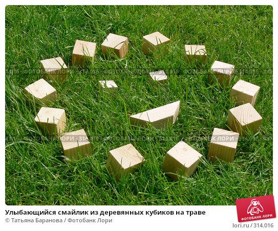 Улыбающийся смайлик из деревянных кубиков на траве, фото № 314016, снято 17 мая 2008 г. (c) Татьяна Баранова / Фотобанк Лори