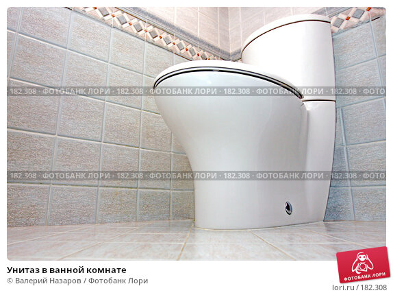 Унитаз в ванной комнате, фото № 182308, снято 22 января 2008 г. (c) Валерий Торопов / Фотобанк Лори