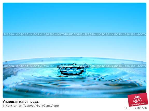Упавшая капля воды, фото № 286580, снято 5 апреля 2008 г. (c) Константин Тавров / Фотобанк Лори