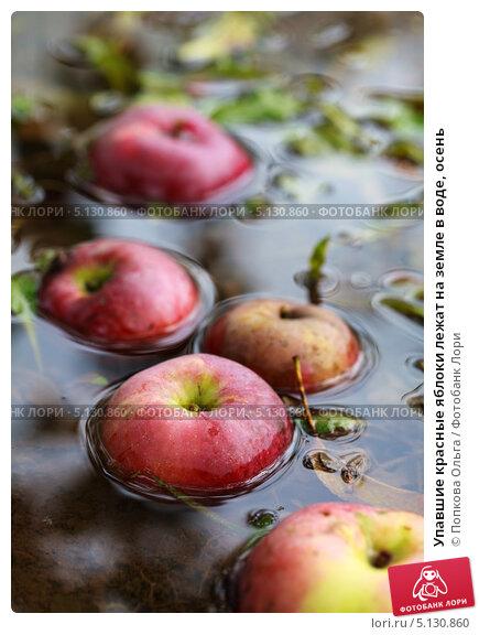 ловить яблоки сонник