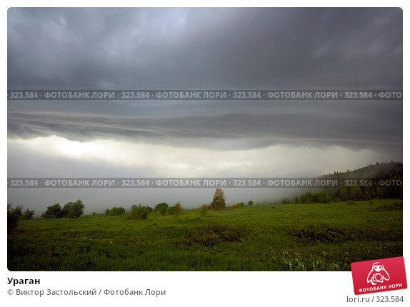 Купить «Ураган», фото № 323584, снято 12 июня 2008 г. (c) Виктор Застольский / Фотобанк Лори